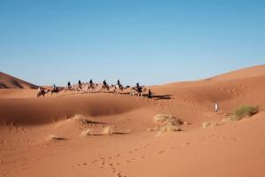 désert_caravane