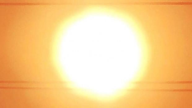 soleil_oiseau_largeur